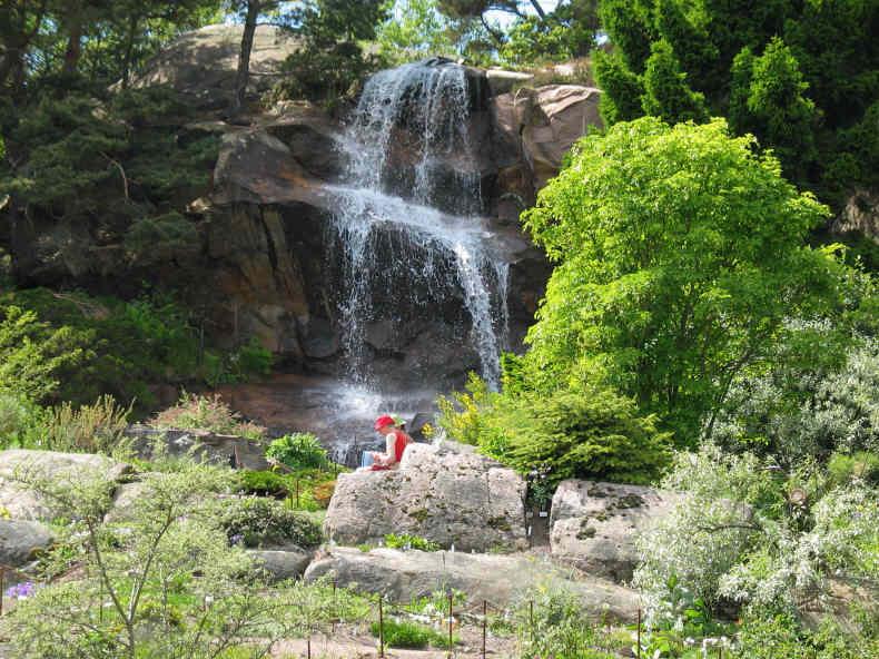 Botanischer Garten in Göteborg - Schwedentipps.se